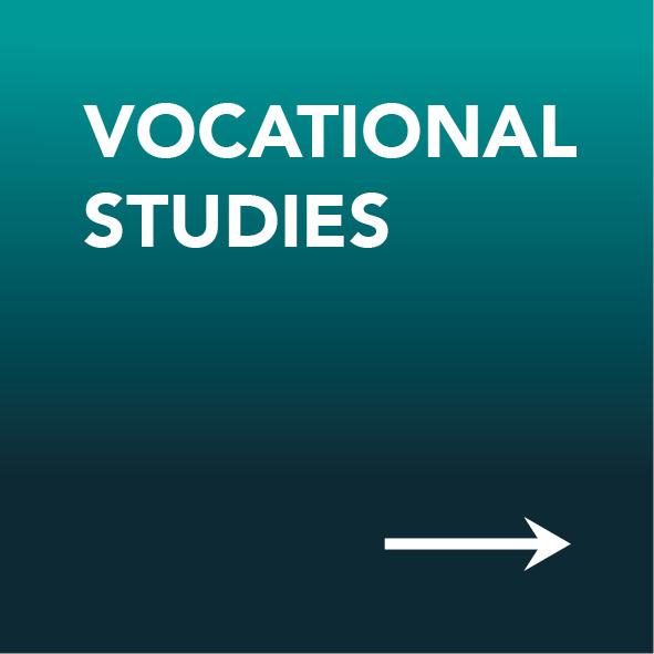 Vocational studies